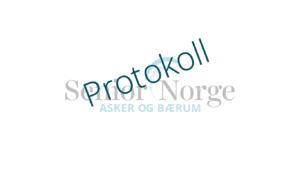 Senior Norge Asker og Bærum - Protokoll